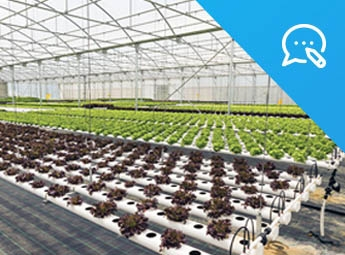 IOT SENSORS BOOST AGRICULTURE INDUSTRY