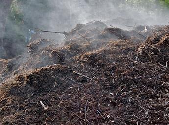 Compostagem de resíduo biodegradáveis - Monitorização da temperatura