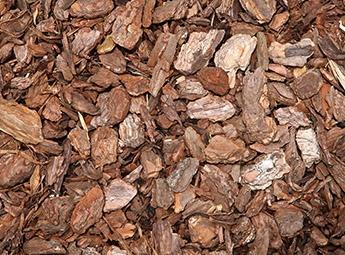 Pine bark - Thermal treatment temperature monitoring